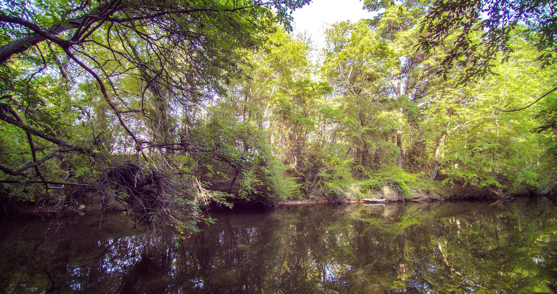 Hwy39-Little-River-Land-14